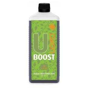 UBoost 1L